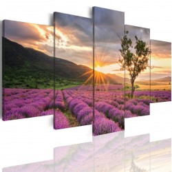 Canvas image spread on the frame 502