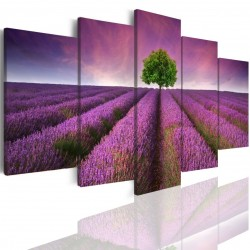 Canvas image spread on the frame 503