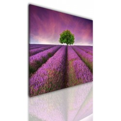 Canvas image spread on the frame 524
