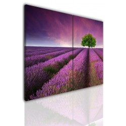 Canvas image spread on the frame 531