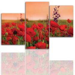 Obraz - canvas natažený na rám 12009