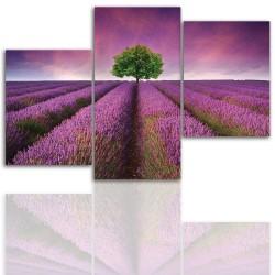 Obraz na płótnie canvas 12010
