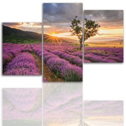 Canvas image spread on the frame 12022