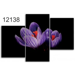 Canvas image spread on the frame 12138