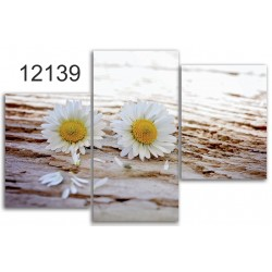 Canvas image spread on the frame 12139