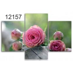 Bild – auf einen Rahmen aufgezogenes Cans 12157